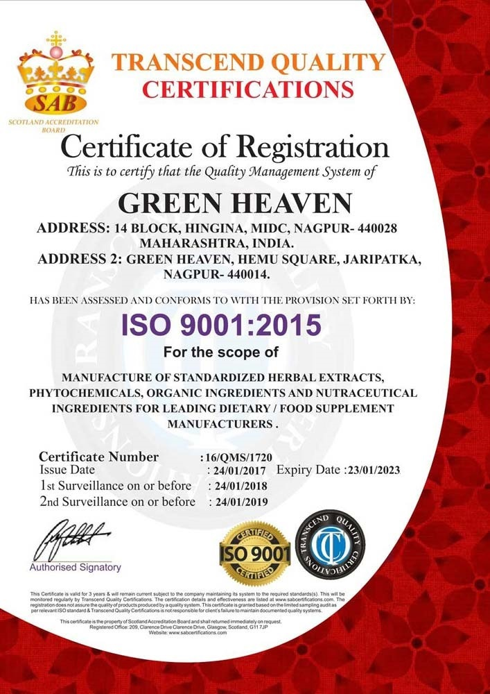 AN ISO 9001:2015 CERTIFICATE